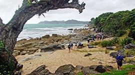 Waipu Coastal Trail