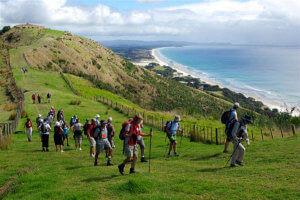 Mangawhai Walking weekend 2015 image