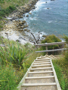 Cliff Top Walk_2-9