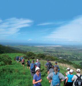 Mangawhai Ridge
