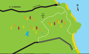 Te Arai Point walks Map