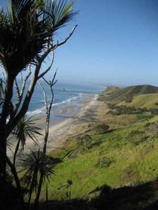 Mangawhai Clifftops breathtaking views