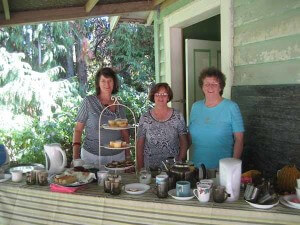 Romance of Kaipara, Hidden Pathways and Garden Walk all have an afternoon treat
