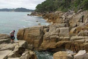Waipu - walk the fascinating limestone walkway