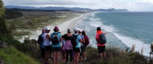 Mangawhai Walking Weekend