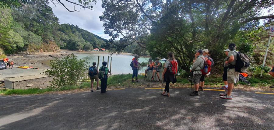 Mangawhai walking weekend 2021 Matheson bay